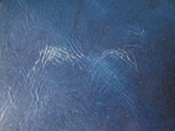 青い革 009