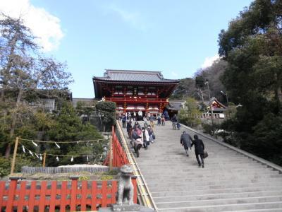 2012.03.13 鎌倉鶴が岡八幡