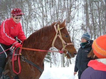 馬のお散歩に遭遇
