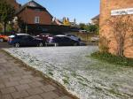 Snow IMG_1837