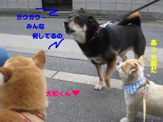 やまP登場!