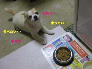 IMG_3198.jpg