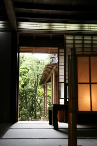 toshima_8320.jpg