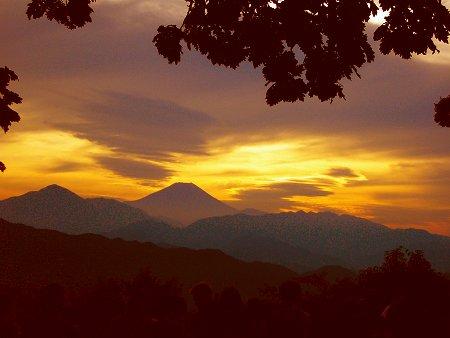 高尾山から眺める富士山