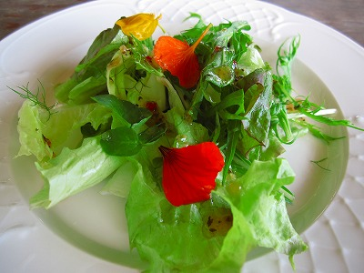 ランチセットのサラダ。
