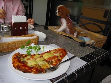 ナンのカレーピザ