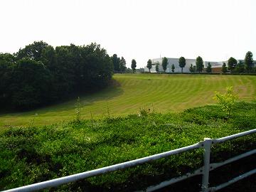 広大な芝生 すり鉢広場