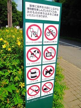 茨城県自然博物館の入り口にて・・・