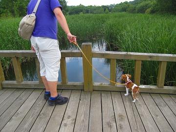 池をひっぴり腰で見つめるマリー