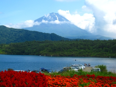 やっと富士山が見れたぁ!