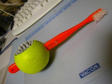 歯ブラシをさすこともできます~