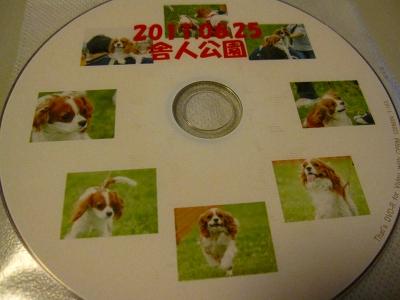 わー可愛い!DVDに印刷してあるー!