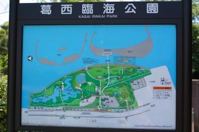 やってきました、葛西臨海公園。