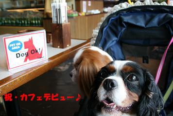 2008/08/01 その1