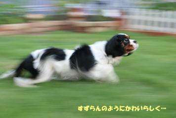 2008/07/24 その1
