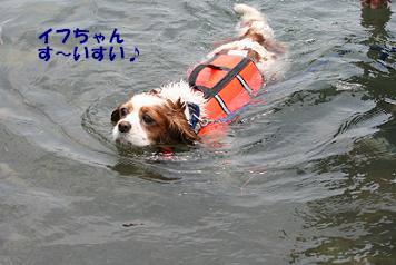 2008/07/20 その7