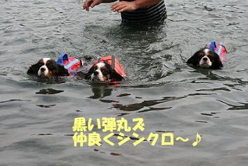 2008/07/20 その10