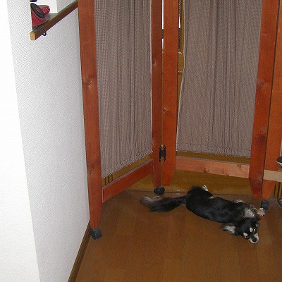 s-玄関にて