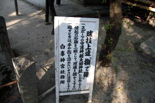 20081015006.jpg