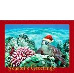 ハワイアン ホヌサンタ クリスマスカード