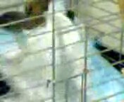 20061101023154.jpg