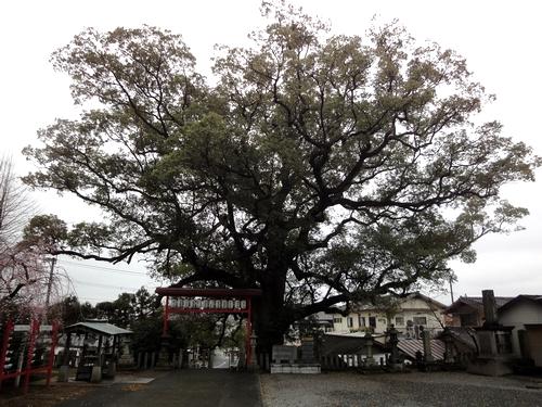 230321 松橋神社13