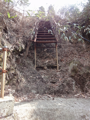 230327 清水滝11