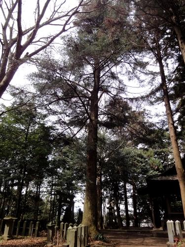 230327 郡塚神社11