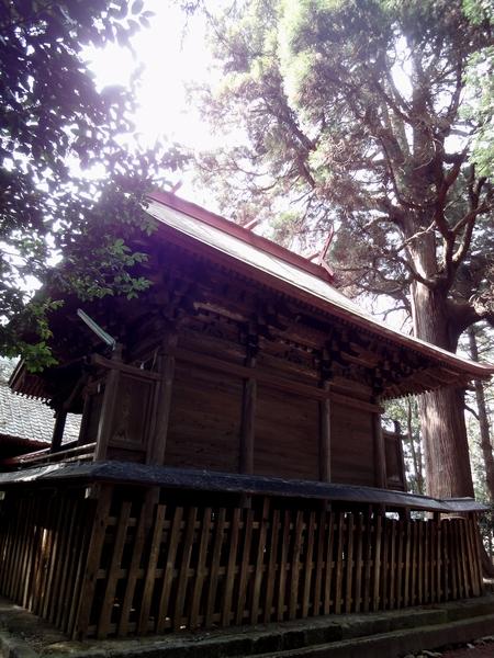 230327 郡塚神社7