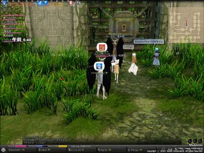 mabinogi_2008_09_05_023.jpg
