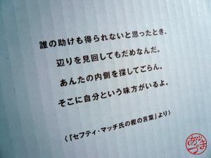 081113_3.jpg