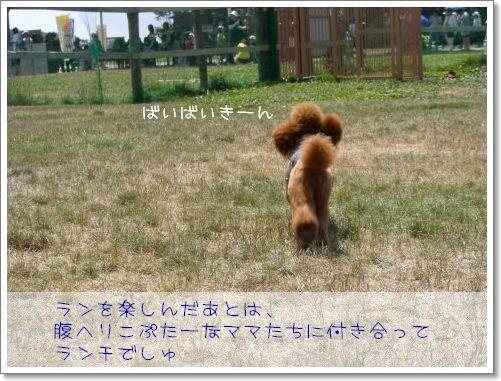 20080810_11.jpg