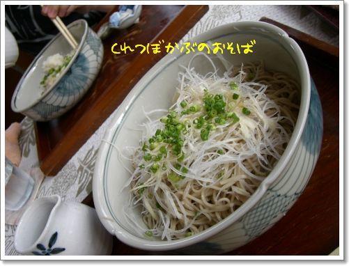 20080811_15.jpg