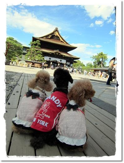 40・2011・9・18・善光寺5