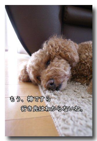 鈴木家の行方.jpg