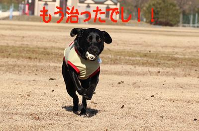 秋が瀬0113-4