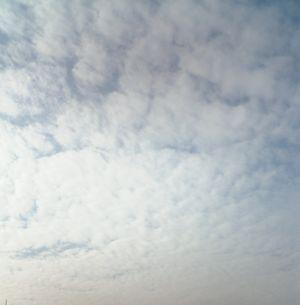でっかい、うろこ雲