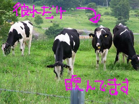 aaa-0015moji.jpg