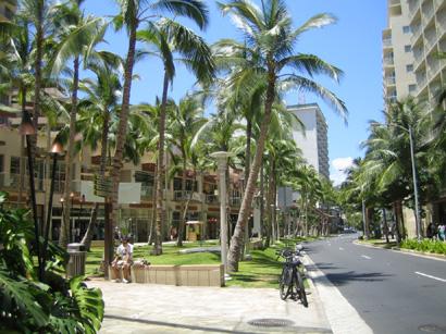 hawaii0806-112.jpg