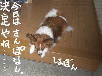 kaminari45.jpg