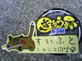 TS3I00050001.jpg