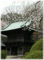 hanagoyomi-engaku-1.jpg
