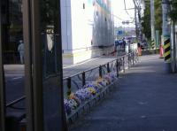 kannbotu-28.jpg
