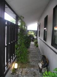 香之樹 (こうのじゅ)のお店の通路