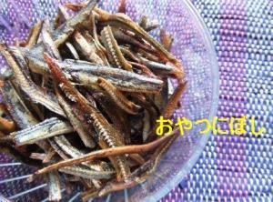 niboshi.jpg