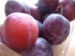 prune.jpg