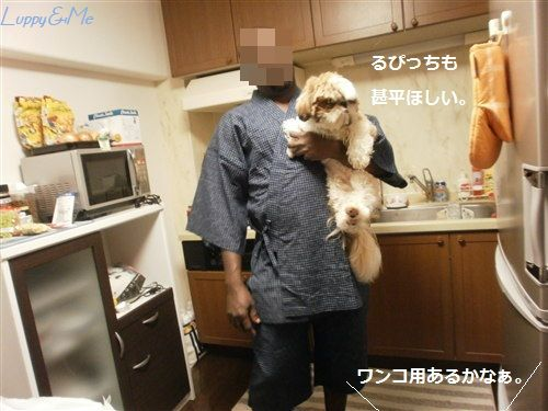Luppyも甚平