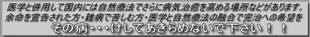 ewfeftgr_20090621184414.jpg