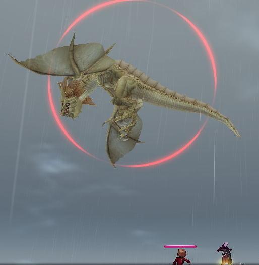 デザートドラゴン7