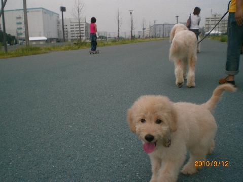 CIMG3386_20110704101406.jpg